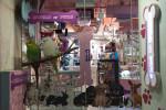 World Of Pets, The Dubai Mall