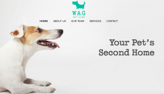 Wag Pet Care