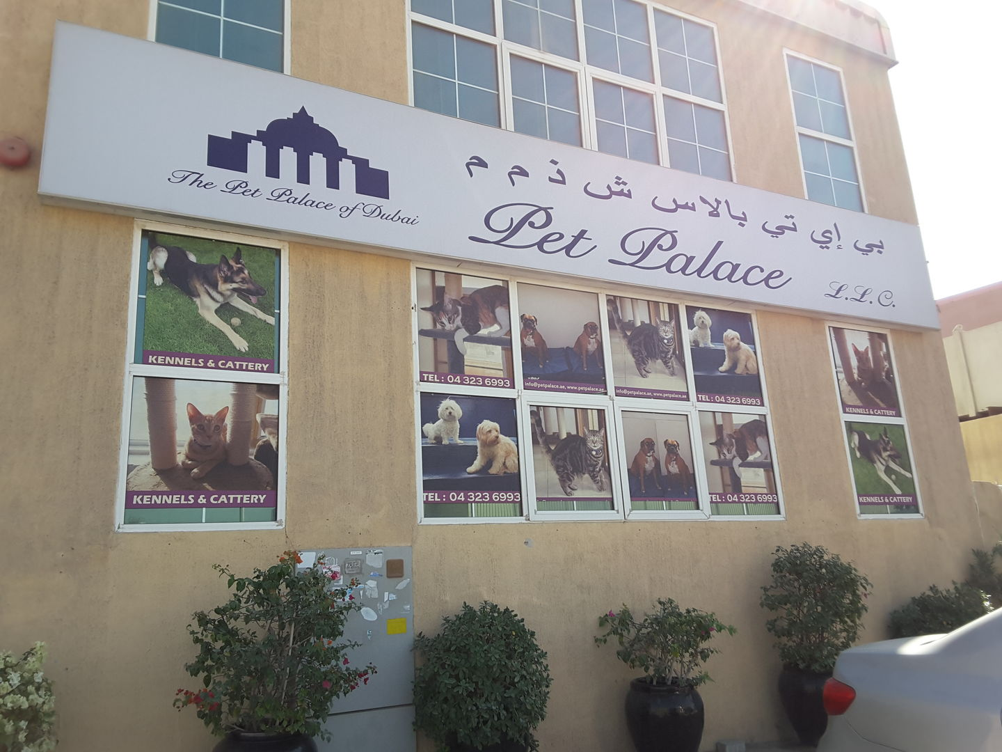 Pet Palace Of Dubai