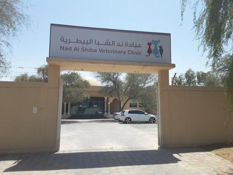 Nad Al Shiba Veterinary