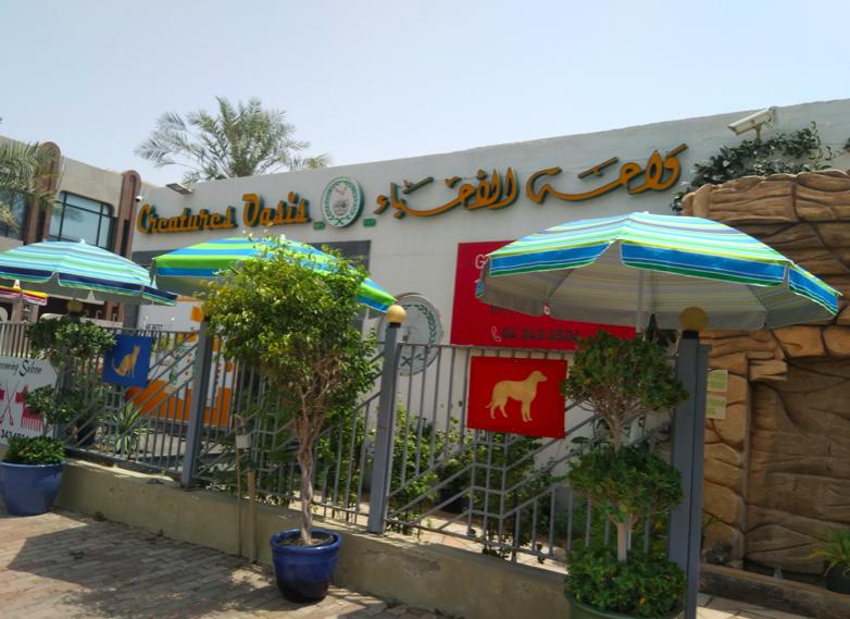 Creatures Oasis Jumeirah