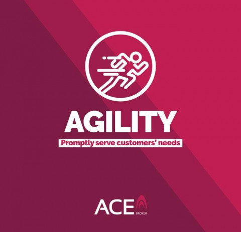 ACE Insurance Brokers